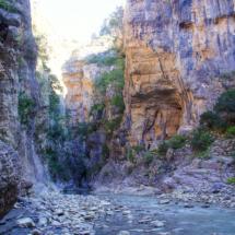 Kanion Langarica